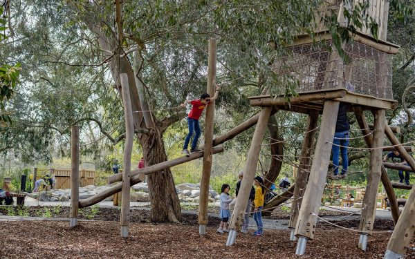 robinia climbing frame playground equipment