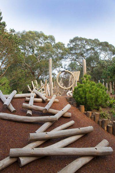 kew children's garden pine tree wilderness