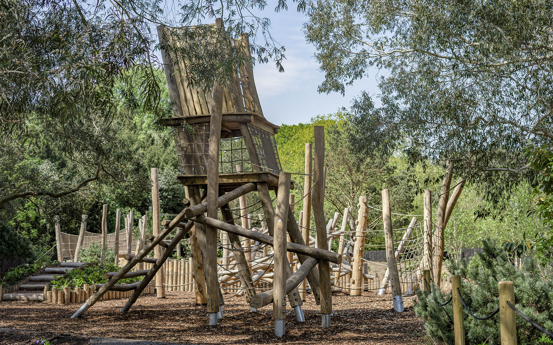 bespoke playgrounds pine tree wilderness