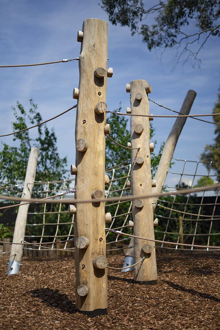 natural playgrounds climbing trunk